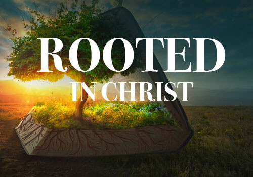 rooted in christ life group